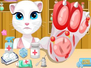 猫咪安吉拉受伤治疗